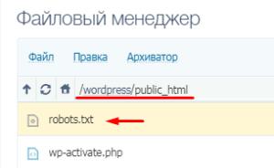 Файл robots.txt в корневой папке сайта