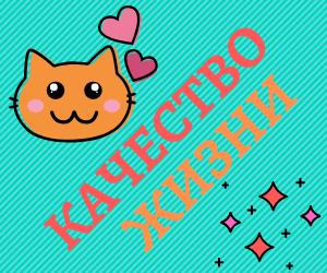 kachestvo - Как установить рекламный баннер на сайт WordPress