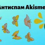 Akismet Anti-Spam регистрация, API-ключ и настройка плагина