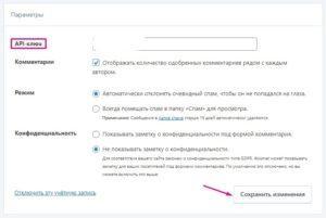 Настройки плагина Akismet Anti-Spam