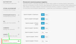 Отключить неиспользуемые виджеты на сайте - настройки Clearfy