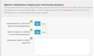 Удалить переменные запроса для статических ресурсов - настройки плагина Clearfy