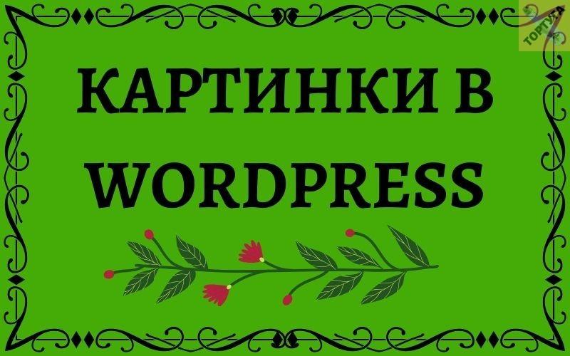 Картинки в статьях WordPress Управление и редактирование изображений