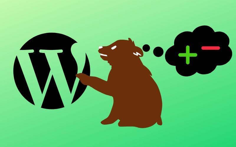 Отзыв о конструкторе сайтов Wordpress - плюсы и минусы CMS
