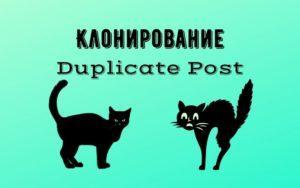 Плагин клонирования Duplicate Post - как сделать копии записей на сайте WordPress