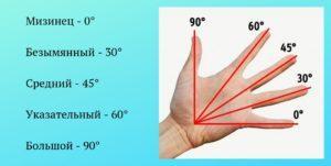 Как измерить градус угла без транспортира при помощи руки и пальцев