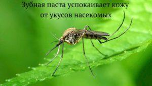 Лайфхаки красоты - зубная паста от укусов насекомых