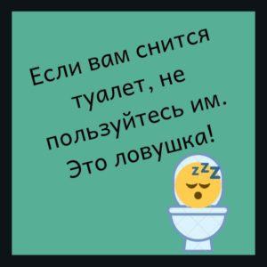 Юмор про туалет и сон