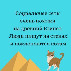 Веселые картинки про социальные сети, мемы про кошек